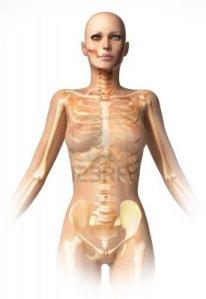 Skelett-Frau